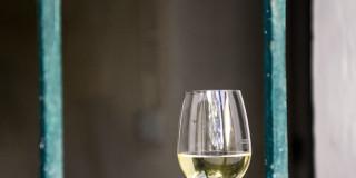 Wein Weingut Eder DSC_0548_wein_gitter